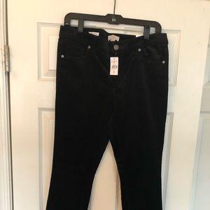 NWT Ann Taylor Loft corduroy pants